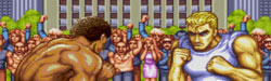 Final Fight/Street Fighter II: