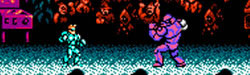 The Black Sheep: Street Fighter 2010 (NES)