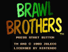 Brawl Brothers (Virtual Console)