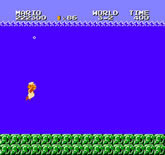 Super Mario Bros.: The Lost Levels (Nintendo)