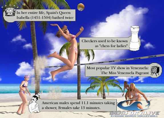 Sexy beach video game